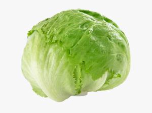148-1481398_iceberg-lettuce-transparent-background-iceberg-lettuce-png-pngmed