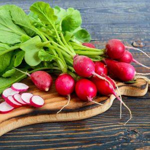 UK_freshly-harvested-radishes
