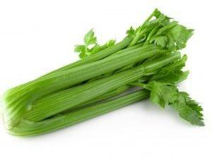 fresh-celery-isolated-white-background_33736-2478