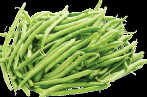 purepng.com-green-beansvegetablesbean-string-beans-green-beans-snap-beans-french-beans-941524683401ivdz9med