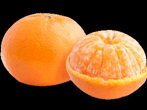 purepng.com-mandarinmandarinorangecitrus-reshnimandarinsfood-1701527331821wt9df